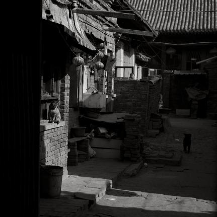 China fujifilm_0118
