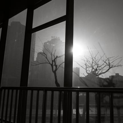 China fujifilm_0312