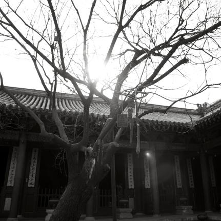 China_0318